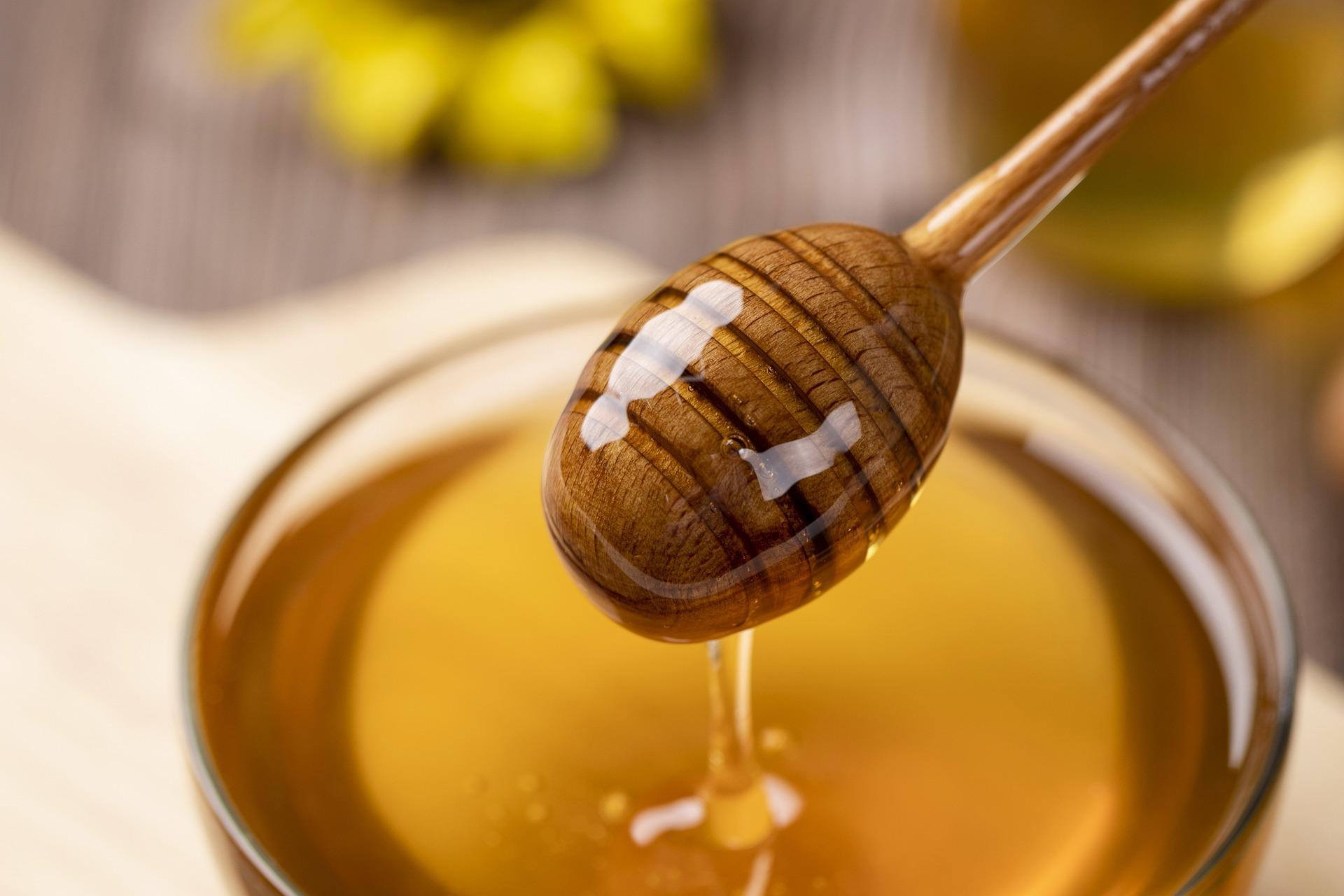 honey-4770245_1920.jpg